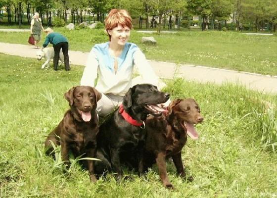 Рекомендации по кормлению собак породы лабрадор-ретривер от питомника «Фром Магнификос Кингдом»
